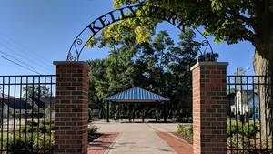 Kelly Park Feature